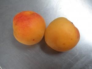 good apricots